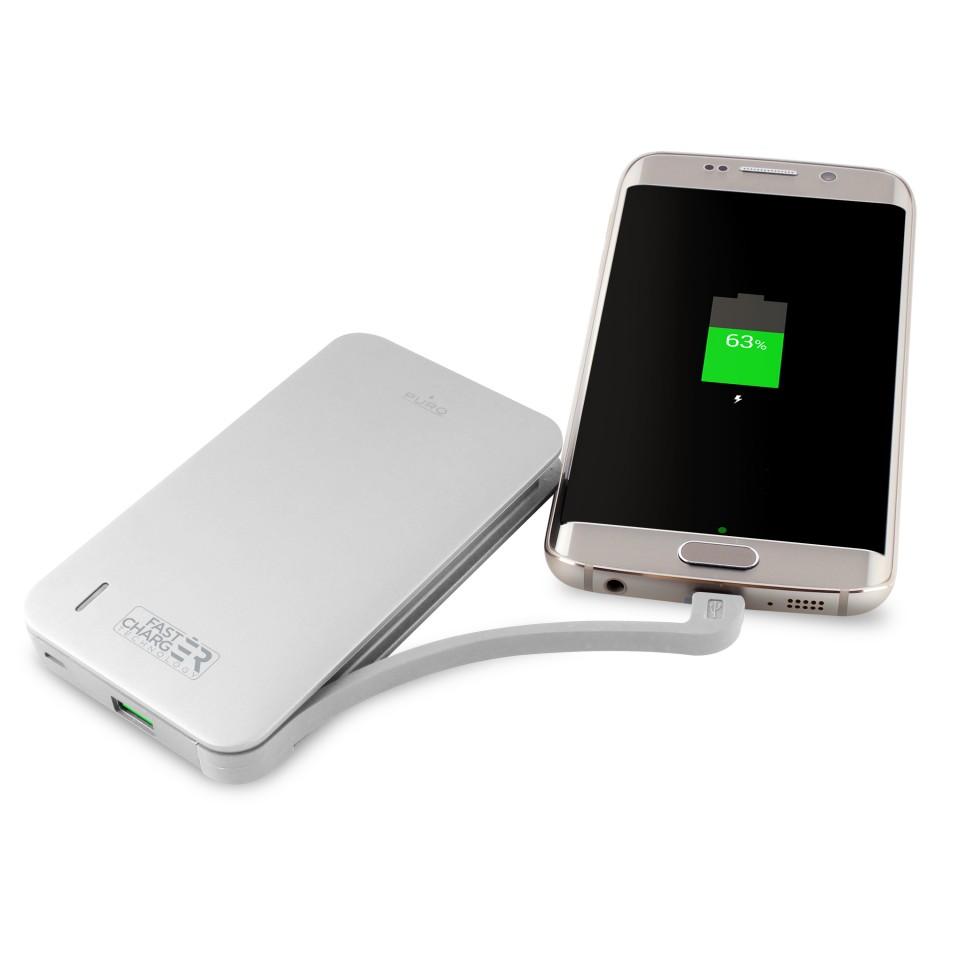 Powerbank puro Fast Charge 2.4A 8100mAh Prateado