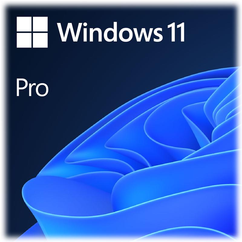 Microsoft Windows 11 Pro 64-bit EN OEM
